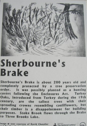 Sherbourne's Brake
